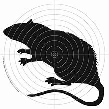 Rat shooting targets